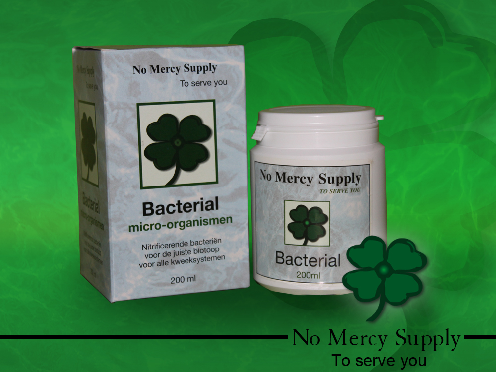 No mercy Bacterial,200ml