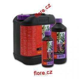 B'cuzz Coco Bloom Stimulator 500ml